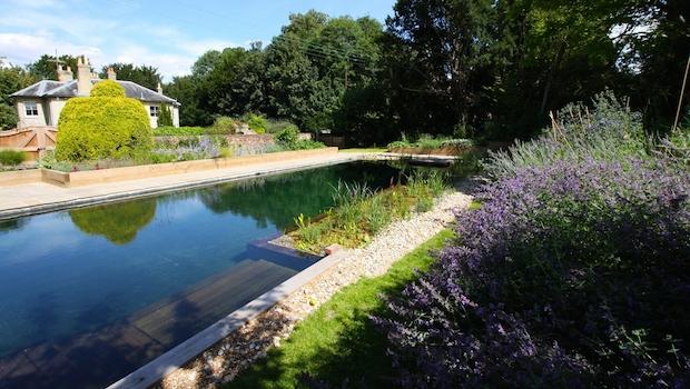 Natural-Pool-1